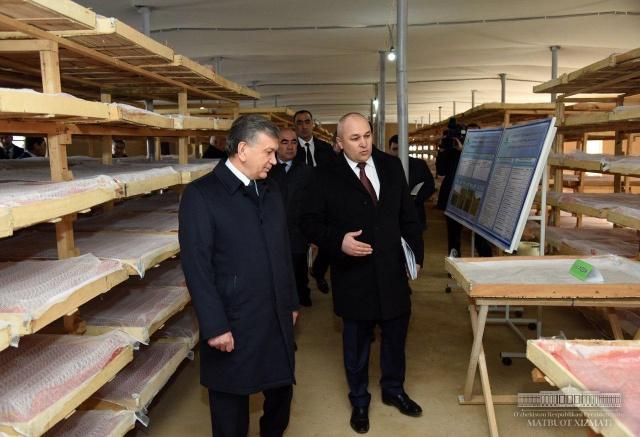 President got acquainted with innovative silkworm farm